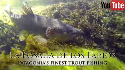 fly fishing in Chile: La Posada De Los Farios